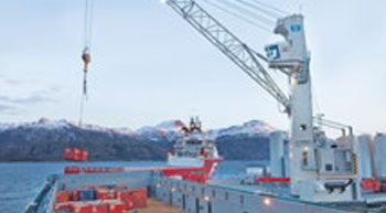 Argentinean power plant operator opts for TPS crane